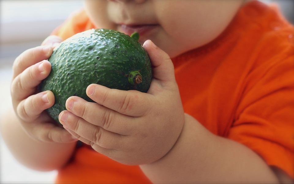avocado_bebe
