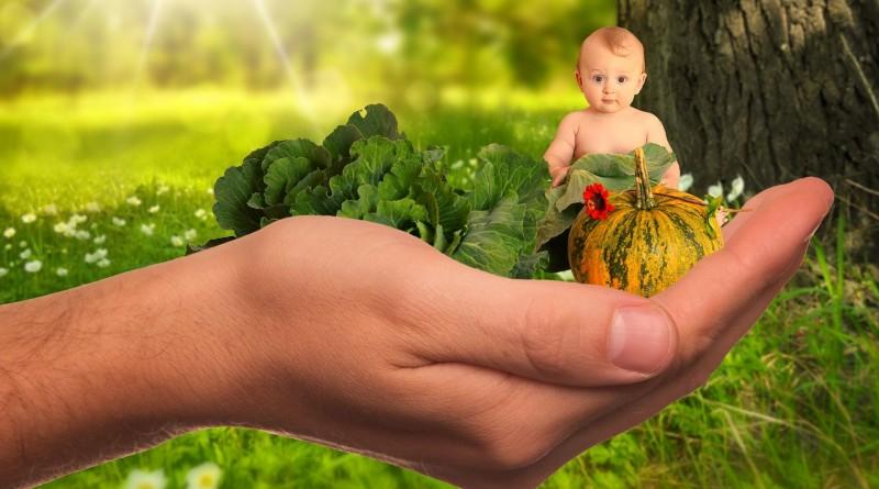 Ce înseamnă și ce nu înseamnă BIO, ECO, Organic, 100% natural