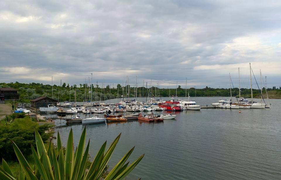 life harbour 1